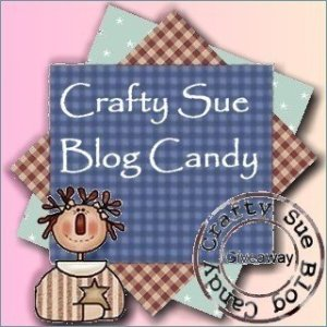 blog_candy_giveaway