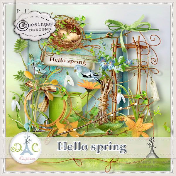 agnesingap_hello_spring_preview